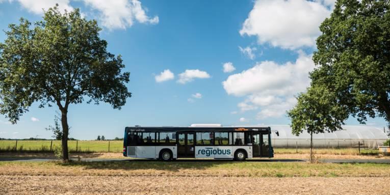 Ein Bus fährt durch eine sommerliche Landschaft