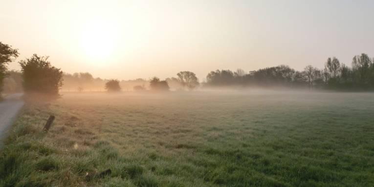 Nebel über den Wiesen des mittleren Leinetals