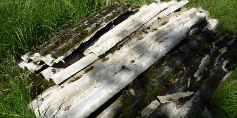 Wellasbestzementplatten im Gras liegend