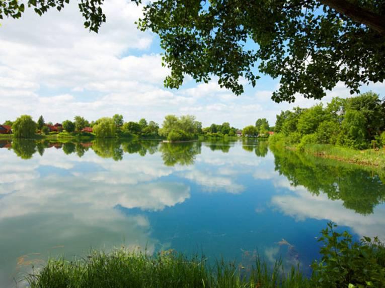 Ein von Gräsern und Bäumen gesäumter See, auf dessen Oberfläche sich der bewölkte Himmel spiegelt.