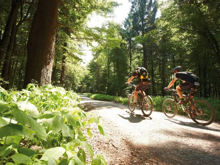 Fahrradfahren im Deister
