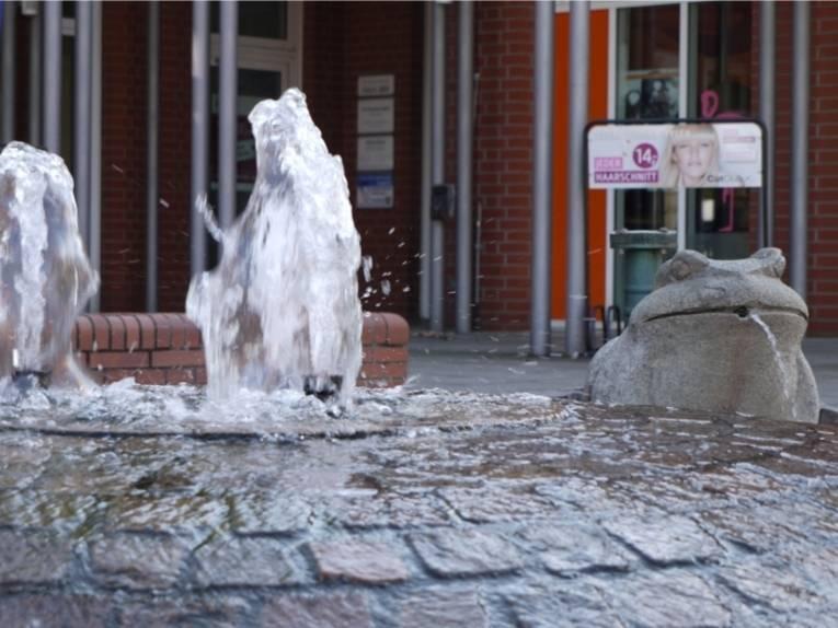 Auf dem Bild ist ein Brunnen mit einem steinernen Frosch zusehen, aus dem Wasser sprudelt.