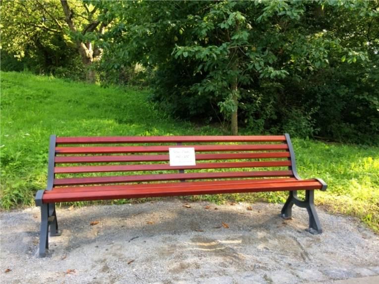 Auf dem Bild sieht man eine Holzbank in einem Park.