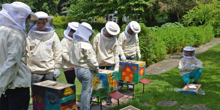 Schüler in weißen Imkerschutzanzügen prüfen Bienenstöcke