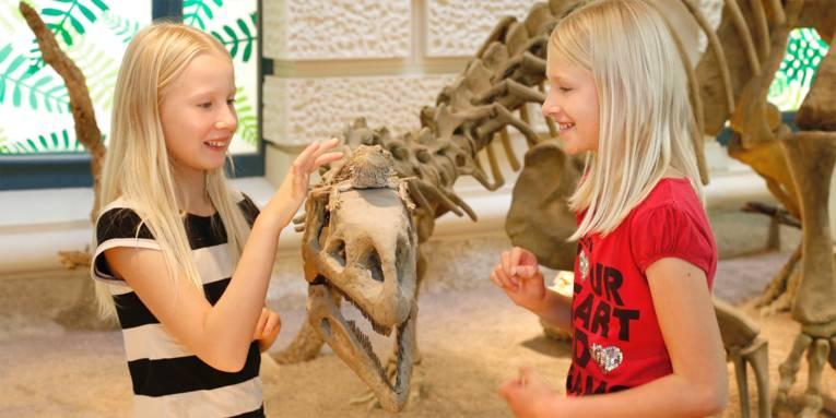 In den LandWelten kann man das Skelett eines Plateosaurus sowie mehrere quicklebendige Bartagamen bewundern.