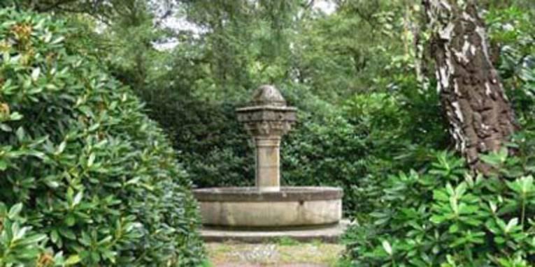 Brunnen, der von Rhododendren umrahmt ist