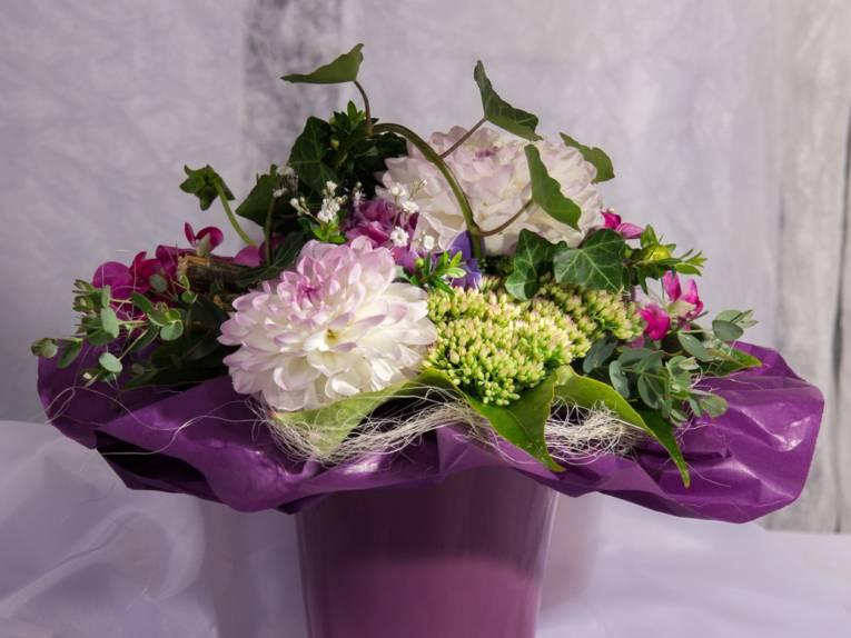 Ein Blumenstrauß mit weißen Dahlien, Sedum, Efeu und rosa Alpenveilchen