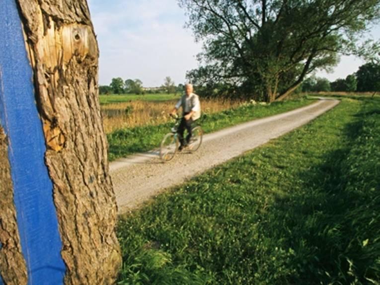 Fahrradfahrer auf einem Feldweg