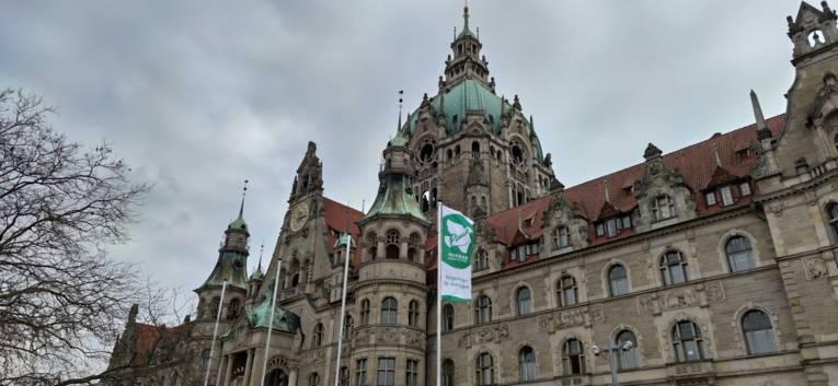 Flaggen vor dem Neuen Rathaus in Hannover