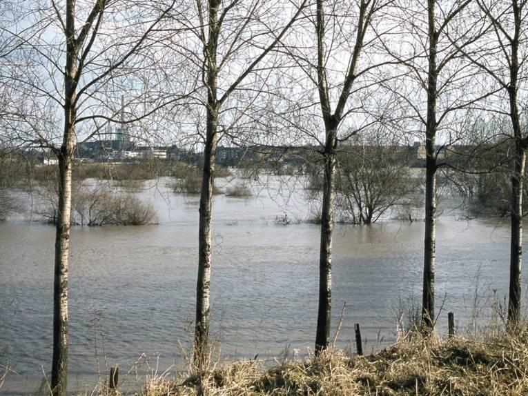 Überschwemmte Leine-Aue