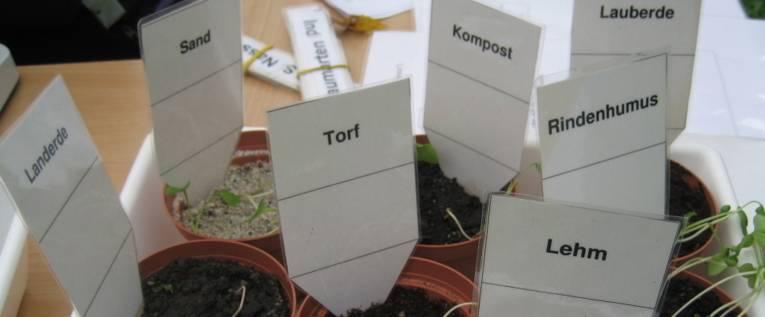 Pflanztöpfe mit verschiedenen Bodenarten