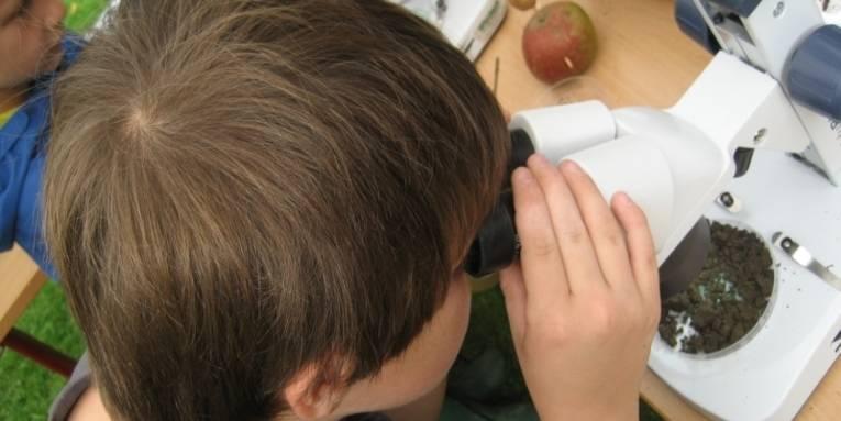 Junge beim Untersuchen von Boden mit dem Mikroskop