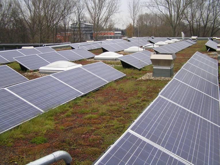 Photovoltaikanlage in Kombination mit einem Gründach auf dem Dach des Werkhofs in der Stammestraße