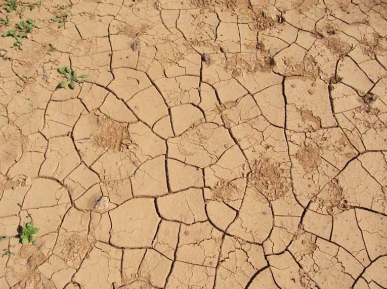 Ein ausgetrockneter Boden
