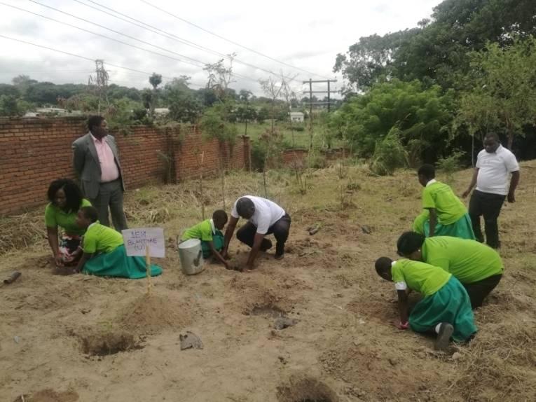 Der stellvertretende Bürgermeister von Blantyre und Schulkinder pflanzen die Baumsetzlinge in die vorbereiteten Löcher ein.
