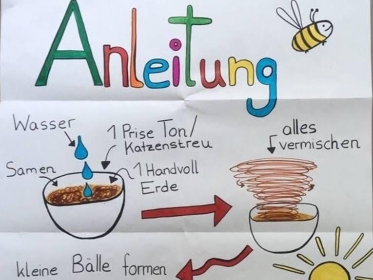Ausschnitt aus einem handgeschriebenen Poster mit einer Anleitung zum Herstellen von Samenbomben.