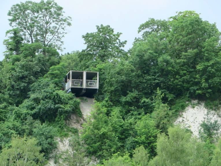 Ein Aussichtscontainer zwischen Bäumen.
