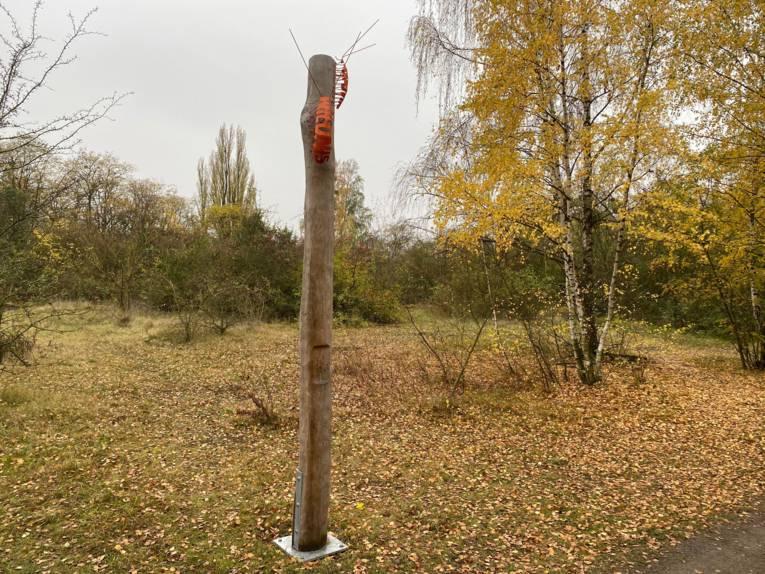 Eine Stele mit einer Assel in der Natur.
