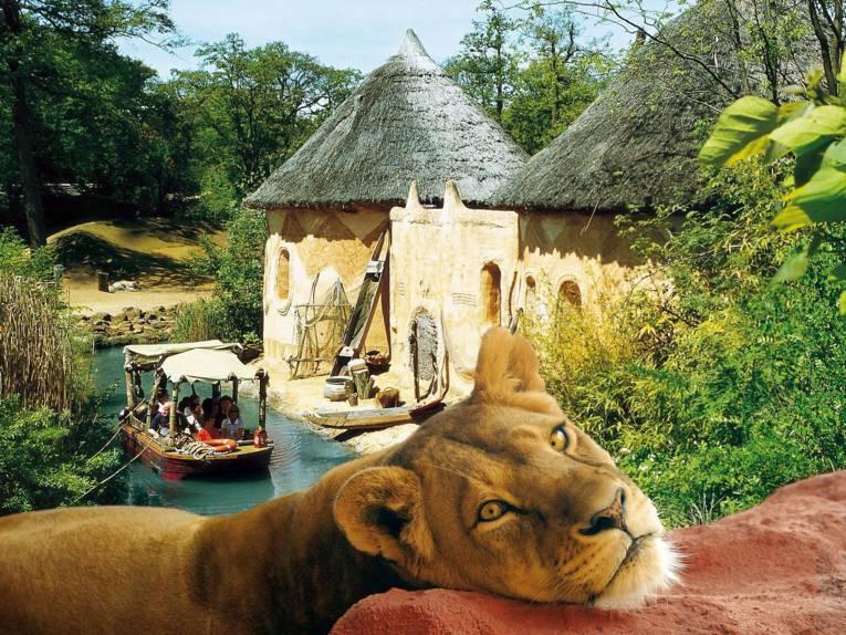 Boot auf einem Fluss. Im Vordergrund ein Löwe.