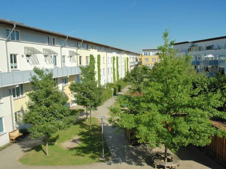 Eine moderne Wohnsiedlung, im Vordergrund mehrere Bäume.