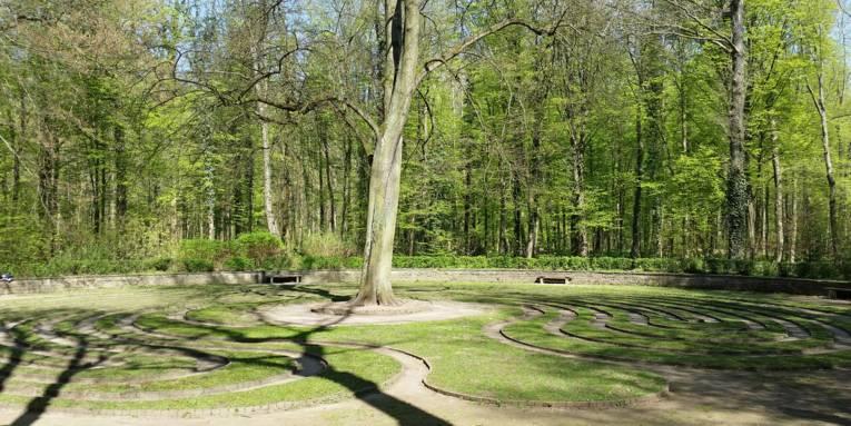 Rasenlabyrinth mit Baum in der Mitte.