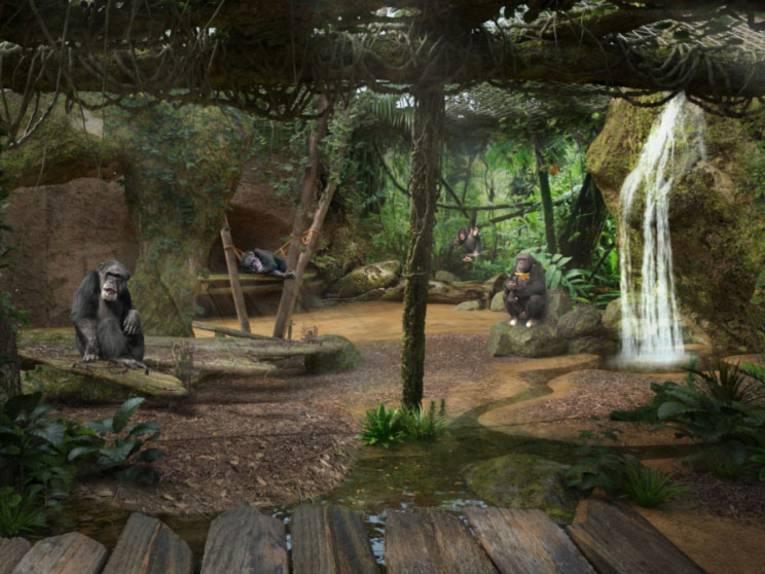 Zukünftige Schimpansenanlage von innen