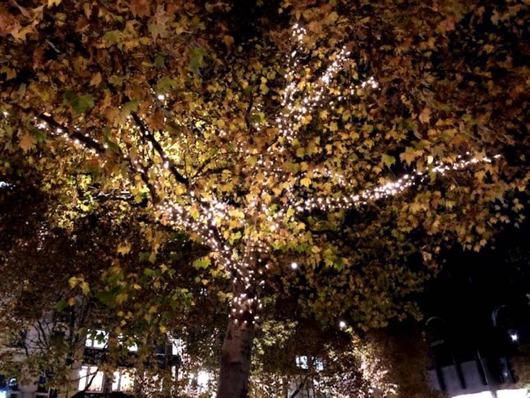Lichterkette in Baum