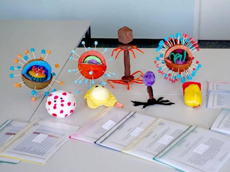 Modelle von Viren auf einem Tisch