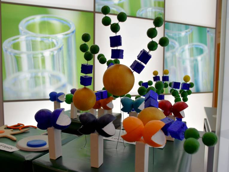 Modell von Molekülen
