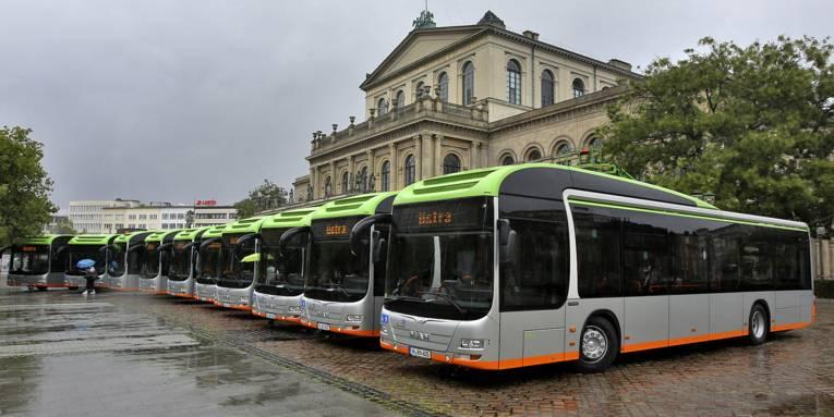 Acht Busse nebeneinander vor einem Gebäude.