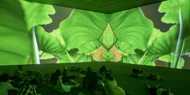 Menschen sitzen und liegen auf dem Boden eines großen Raumes an dessen Wände Aufnahmen aus einem Garten projiziert werden.