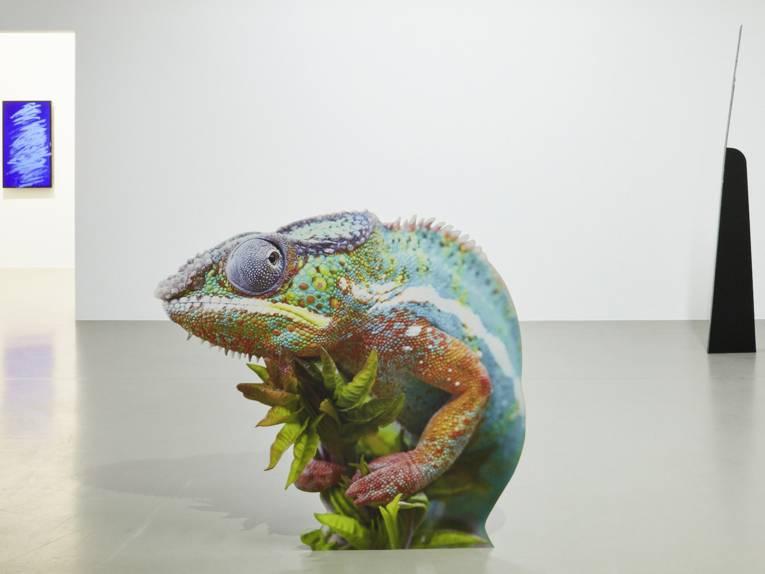 Auf Pappständer gezogenes Foto eines Chameläons in einem Ausstellungsraum.