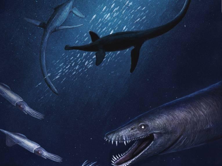 Grafik von Unterwassersauriern