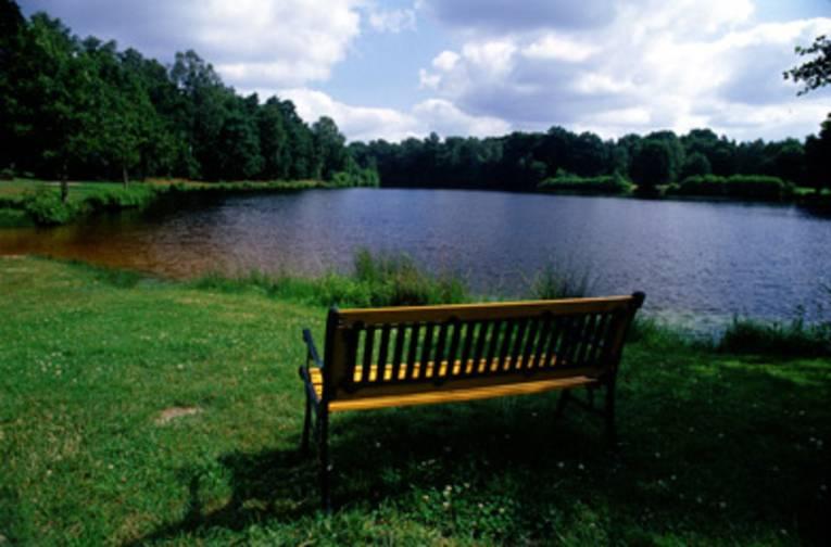 im Vordergrund eine Bank auf einer grünen Uferböschung, die Bank ist so aufgestellt, dass ein Sitzender in Richtung See schaut, der im Hintergrund zu sehen ist