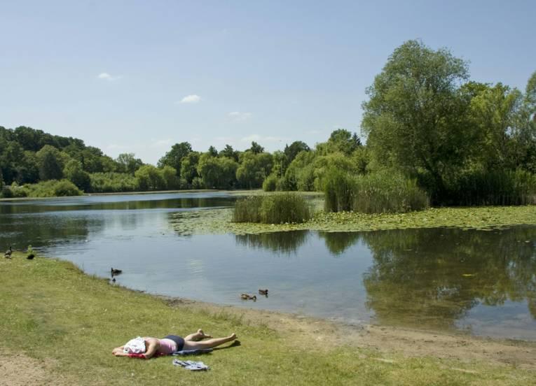 Waldsee mit Seerosen und Enten, am Ufer liegt eine Person und sonnt sich