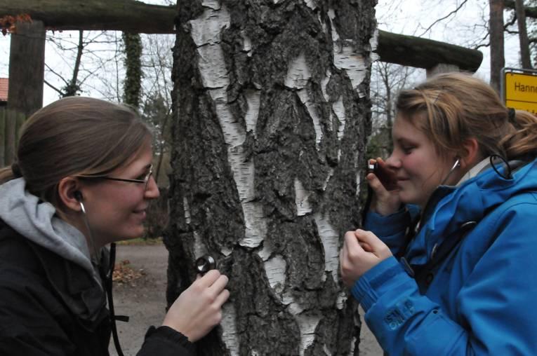 Zwei Mädchen untersuchen einen Baum