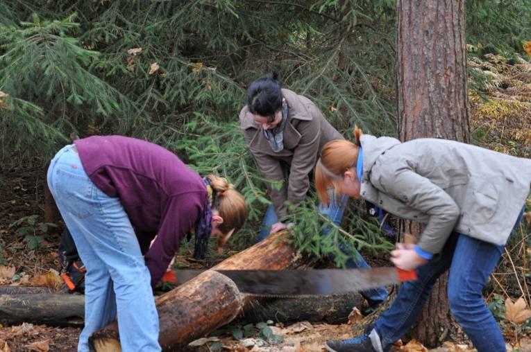 Teilnehmerinnen des Freiwilligen Ökologischen Jahres bei der Waldarbeit
