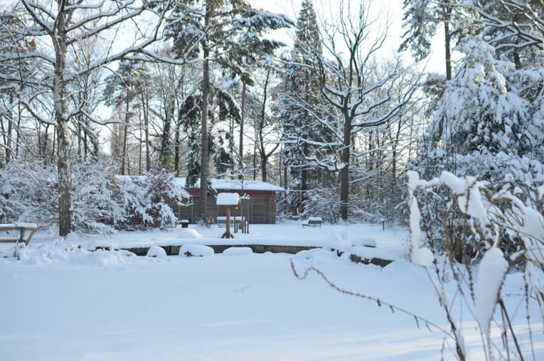 Die Waldstation in winterlicher Kulisse
