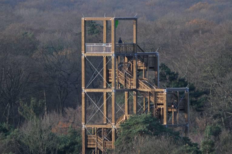 Das Wald-Hochhaus in der Waldstation Eilenriede
