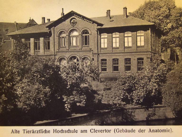 Gebäude, Schwarz-Weiß-Aufnahme