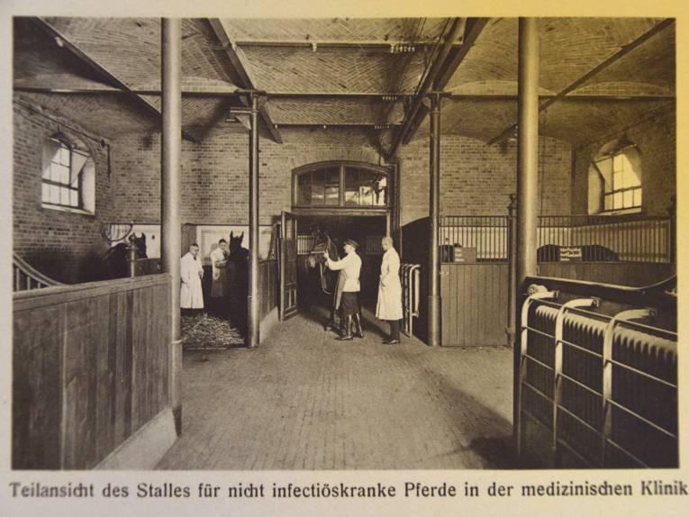 Innenaufnahme eines historischen Pferdestalles, Schwarz-Weiß-Aufnahme
