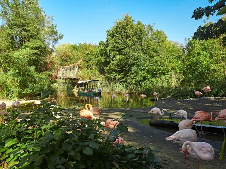 Hannover, Erlebnis-Zoo