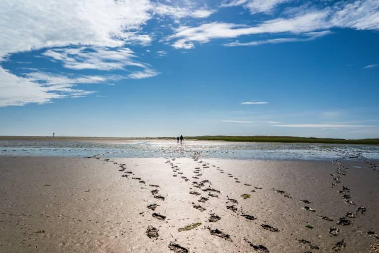 Nordseeküste Wattenmeer