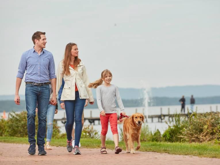 Spaziergang am Steinhuder Meer (Region Hannover, Niedersachsen)