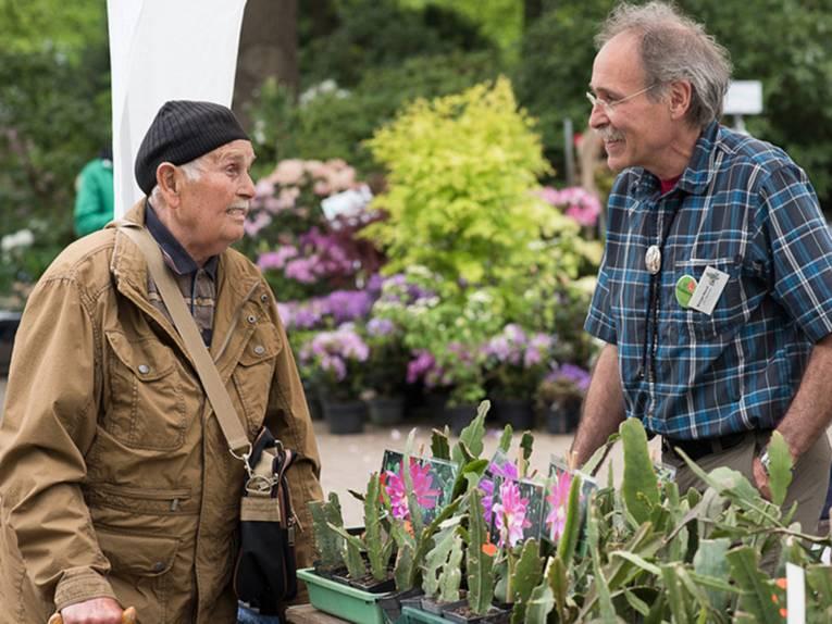 Ein älterer Besucher im Gespräch mit einem Verkäufer an einem Stand, auf dem Sukkulenten zum Verkauf angeboten werden.