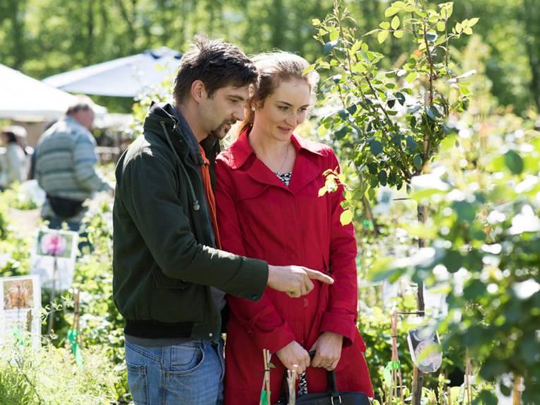 Ein junger Mann zeigt seiner jungen Begleiterin eine Hochstamm-Rose