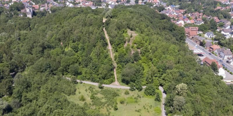Luftbild von einem bewaldeten Hügel in einer Stadt