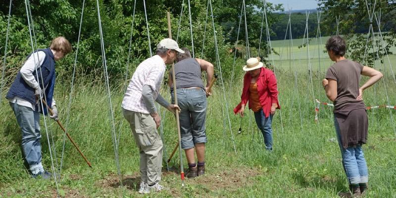 Freiwillige verrichten Gartenarbeit