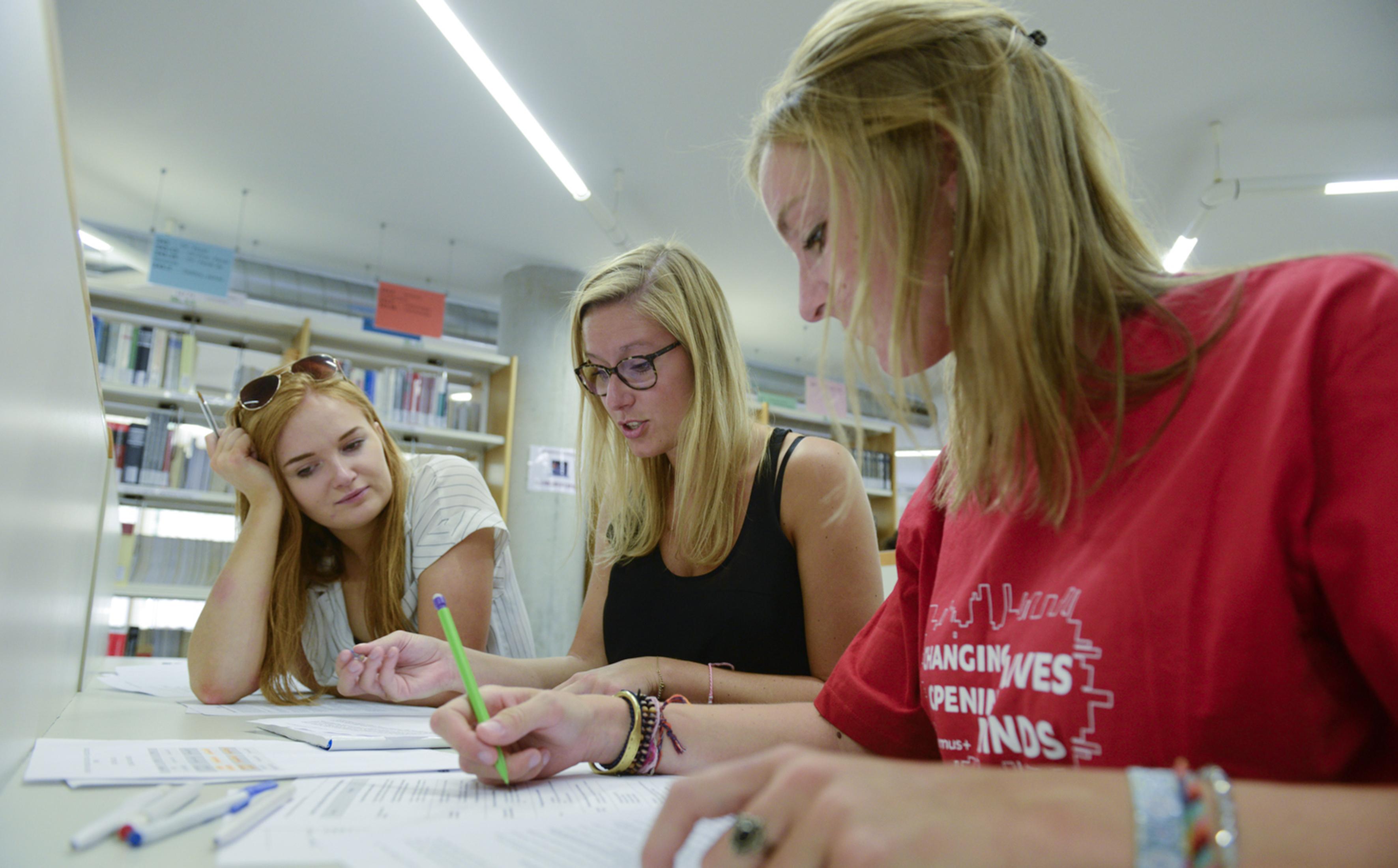 Erasmus students studying