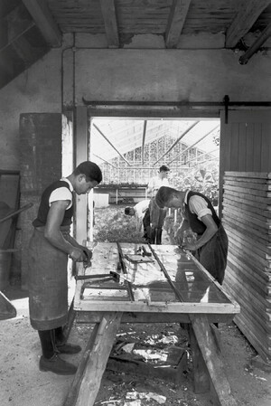 View from the workshop into one of the adjacent hothouses. In the foreground apprentices are repairing the cover of a hotbed.